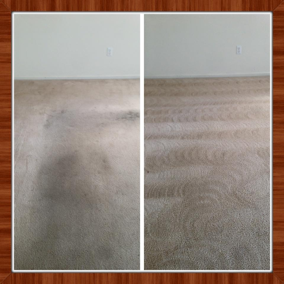 Carpet Amp Upholstery Cleaning Gallery Cheyenne Wheatland